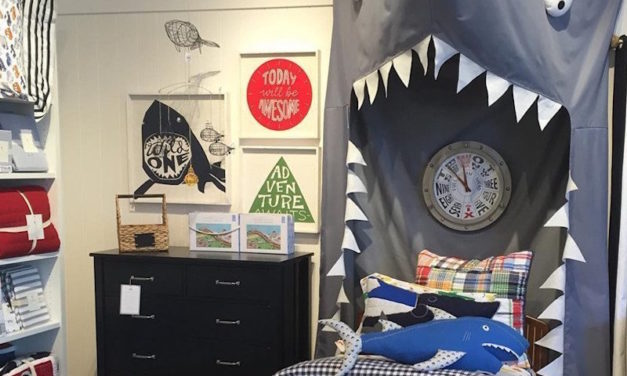 Shark Canopy: The Fun Canopy for Your Child's Bedroom or Playroom