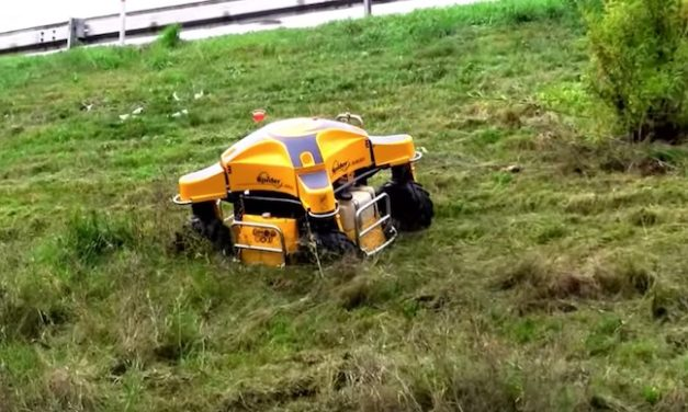 SPIDER Slope Mowers: Mow Slopes Up to 55° Using Remote Control