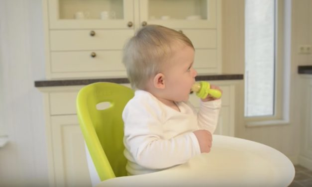 Kidsme Food Feeder: Let Your Kids Feed Themselves Worry-Free