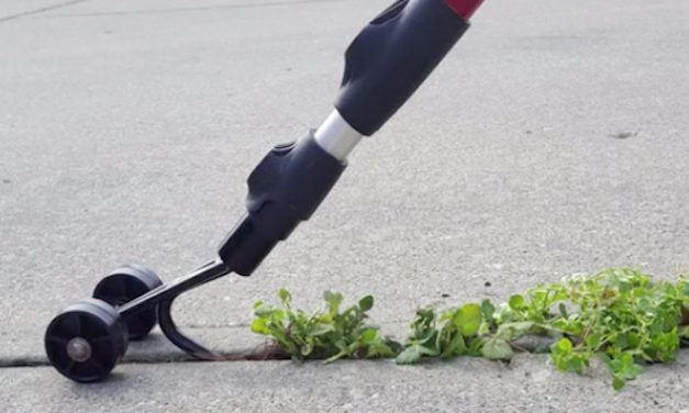 Weed Snatcher: Get Rid of Weeds in Your Deck Easily and Quickly