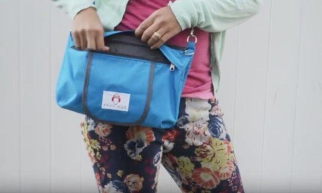 Peke-Buo Diaper Bag Clutch: The Bag with All Your Baby-Changing Needs