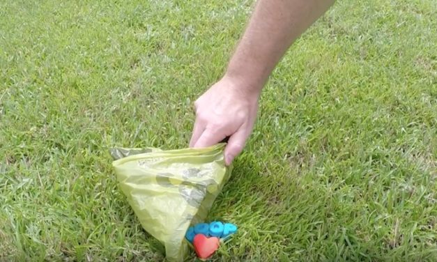 Porta Puppy Poop Scoop: The Bag Carrier with a Built-in Scoop