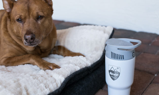 Airwirl: The Portable, Personal Heating and Cooling System