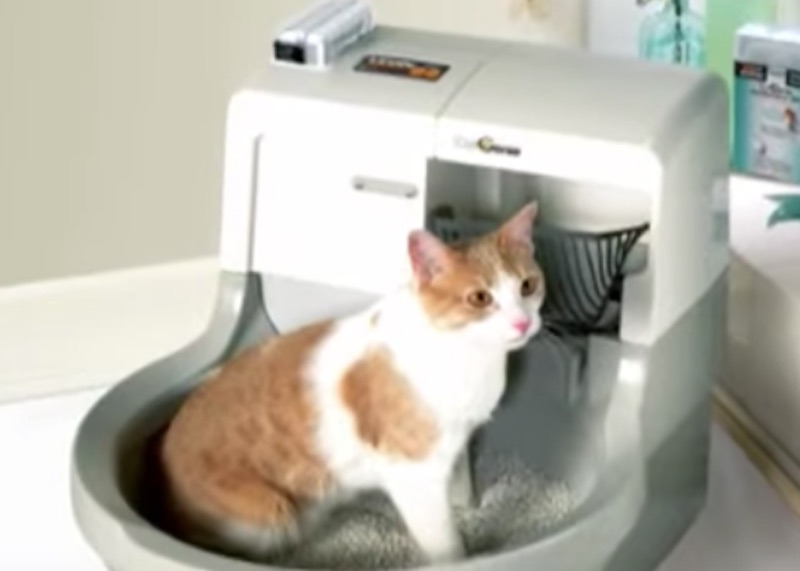 Catgenie The Self Cleaning Self Flushing Cat Toilet