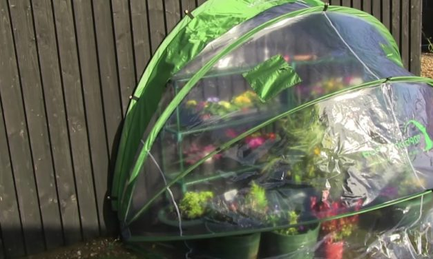 Cave Innovations HortiHood: The Greenhouse for Any Garden