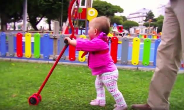 Niniwalker Baby Walker: Teach Your Child How to Walk