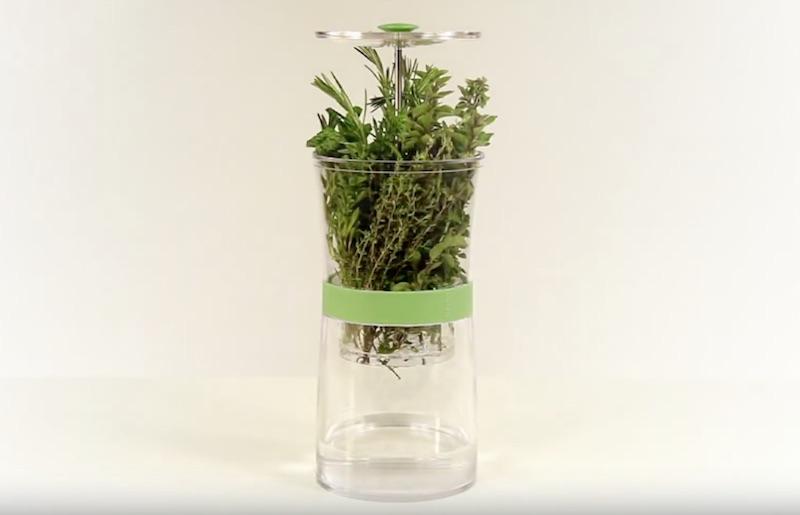 herbkeeper-4