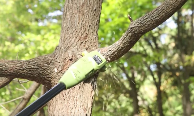 Sun Joe Automatic Chain Saw: Extend with Telescoping Electric Pole