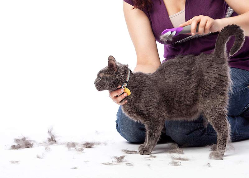 Groomer S Best Fur Fetcher Reduce Shedding With Just One