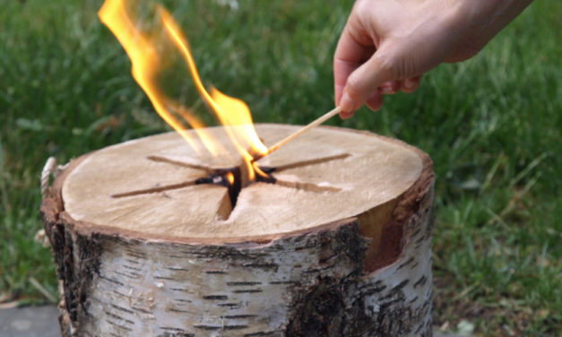 EcoForest Light n' Go Bonfire: Light a Fire in No Time