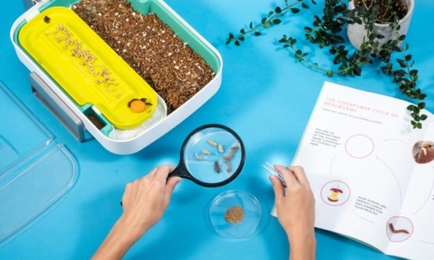 Hive Explorer: The Fun, Smart STEM Education Kit